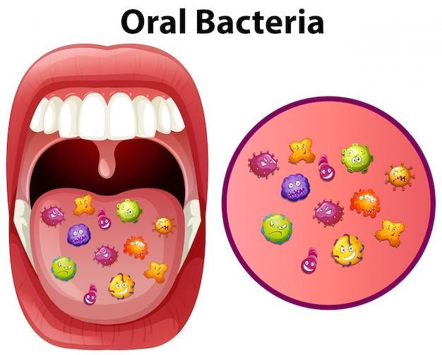 Ein bild, das mundbakterien zeigt Kostenlosen Vektoren