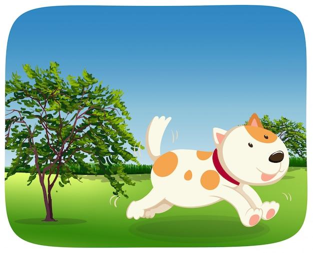 Ein hund läuft im park Kostenlosen Vektoren