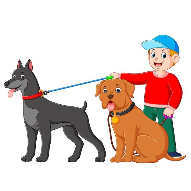 Ein junge, der den roten pullover trägt, steht hinter zwei großen hunden Premium Vektoren