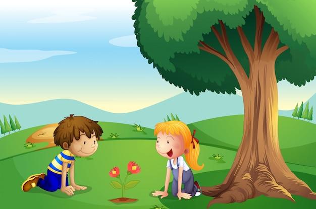 Ein mädchen und ein junge beobachten das wachsen der pflanze Premium Vektoren
