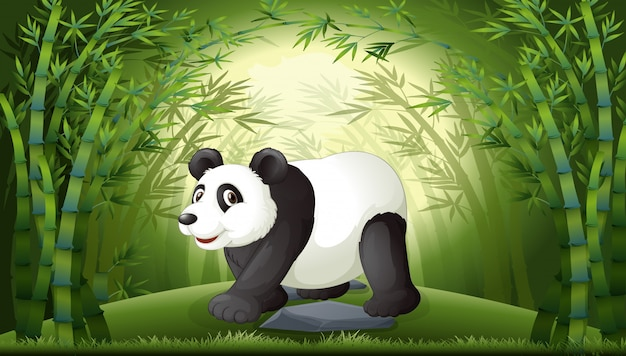 Ein panda im bambuswald Premium Vektoren