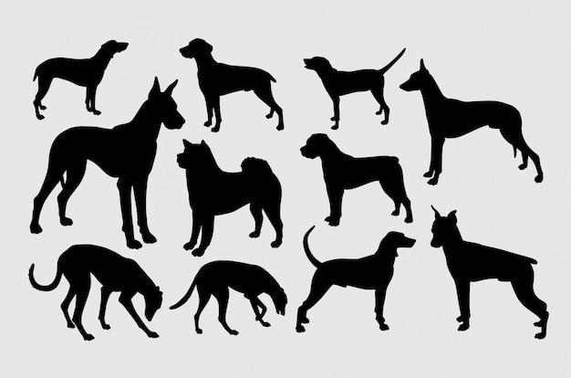 Eine art hundehaustier-tierschattenbild Premium Vektoren