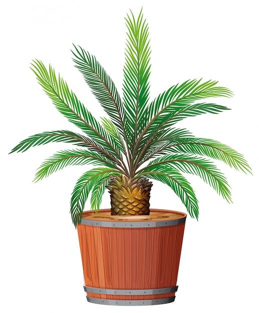 Eine pflanze, die im topf wächst Kostenlosen Vektoren