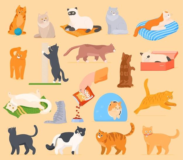 Eine reihe von comic-katzen, die spielen, sich ausruhen, schlafen, essen. Premium Vektoren