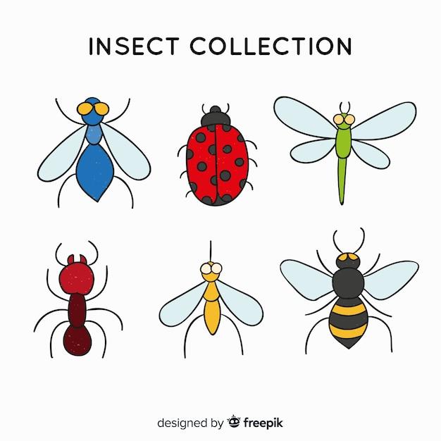 Einfache insektensammlung Kostenlosen Vektoren