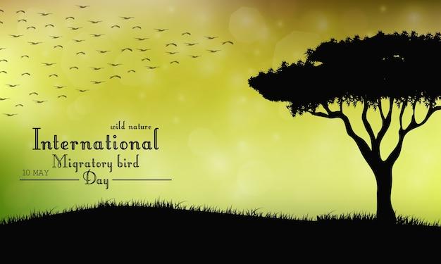 Einwanderungstag der vögel auf sonnenunterganghintergrund Premium Vektoren