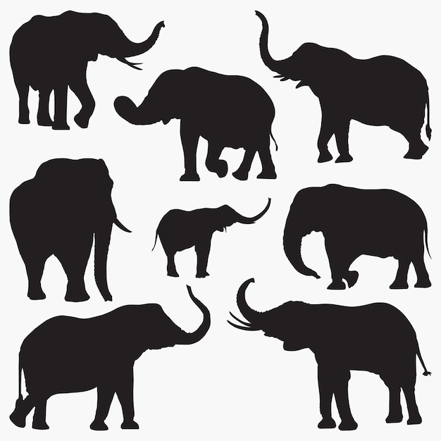 Elefant-silhouetten2 Premium Vektoren