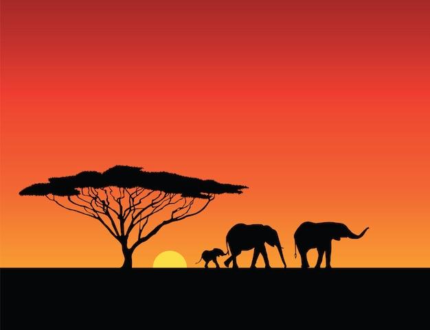 Elefantenschattenbilder, sonnenuntergangsillustration Premium Vektoren