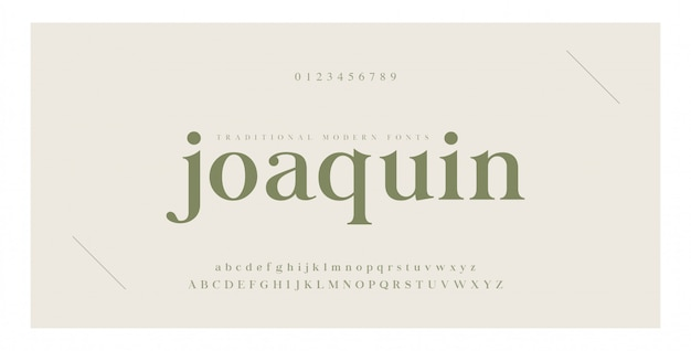 Elegante alphabet buchstaben serifenschrift und nummer Premium Vektoren