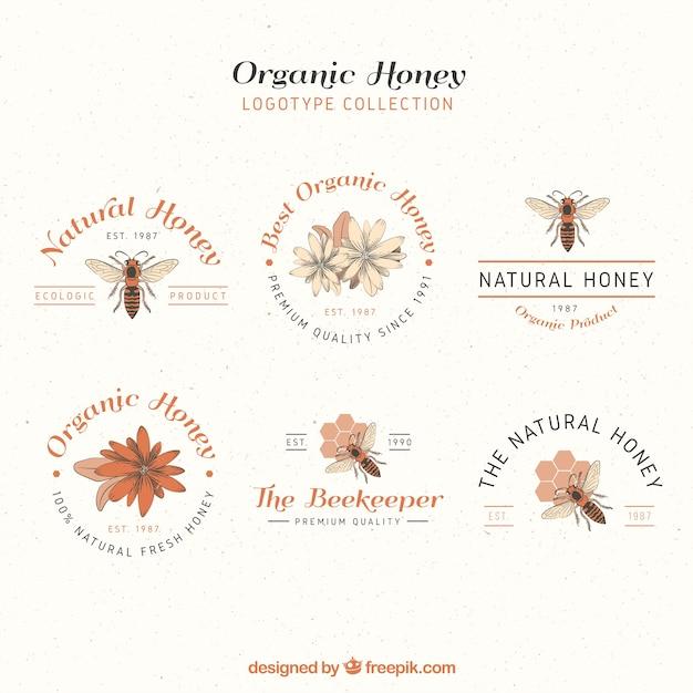 Elegante honig logos, handgezeichneten stil Kostenlosen Vektoren
