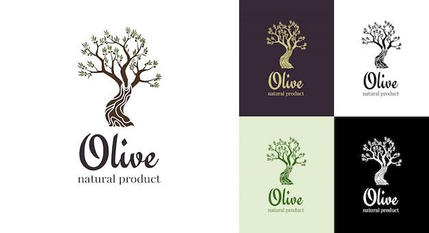 Elegante ikone des eleganten olivenbaums. baum logo design-konzept. olivenbaumschattenbildillustration. emblem der natürlichen olivenölbaumpflanze Premium Vektoren