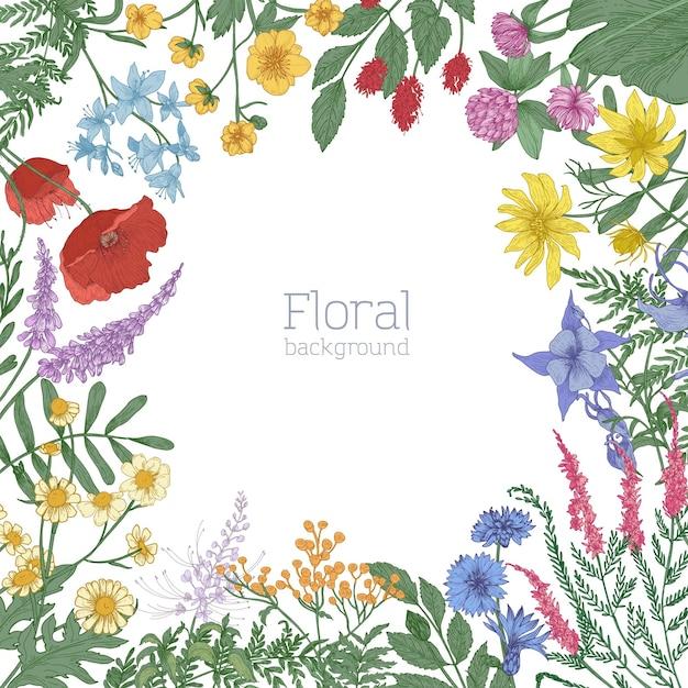 Eleganter quadratischer rahmen, verziert mit bunt blühenden wilden wiesenblumen Premium Vektoren