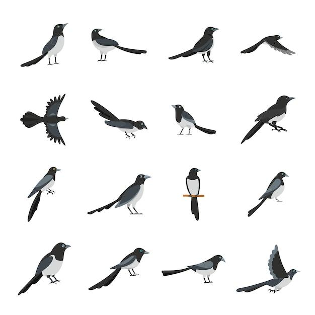 Elsterkrähe-vogelikonen stellten flache art ein Premium Vektoren