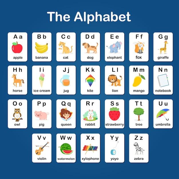 Englischer wortschatz und alphabet a - z karteikarte für kinder zum lernen und zur bildung im kindergarten Premium Vektoren