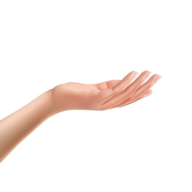 Erreichte weibliche handfläche auf isoliert realistische vektor Kostenlosen Vektoren
