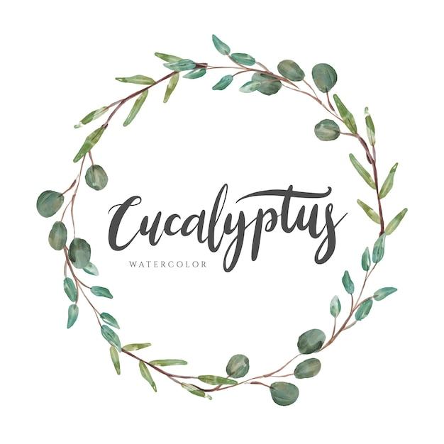 Eukalyptus-lorbeer-aquarell-kranz Premium Vektoren