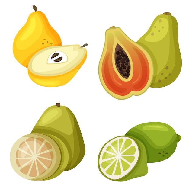 Exotische fruchtpapayaquitte Premium Vektoren