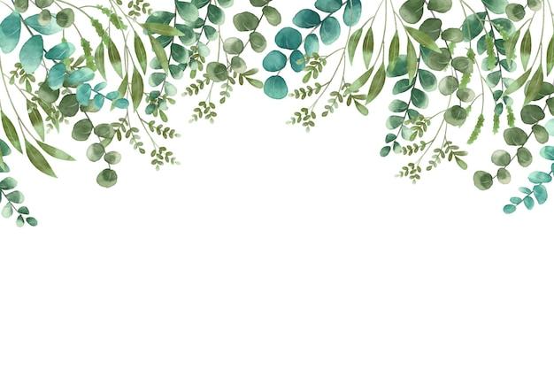 Exotische pflanzen auf weißem kopierraumhintergrund Premium Vektoren