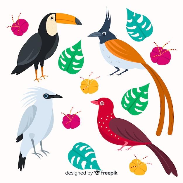 Exotische tropische wilde vogelsammlung Kostenlosen Vektoren