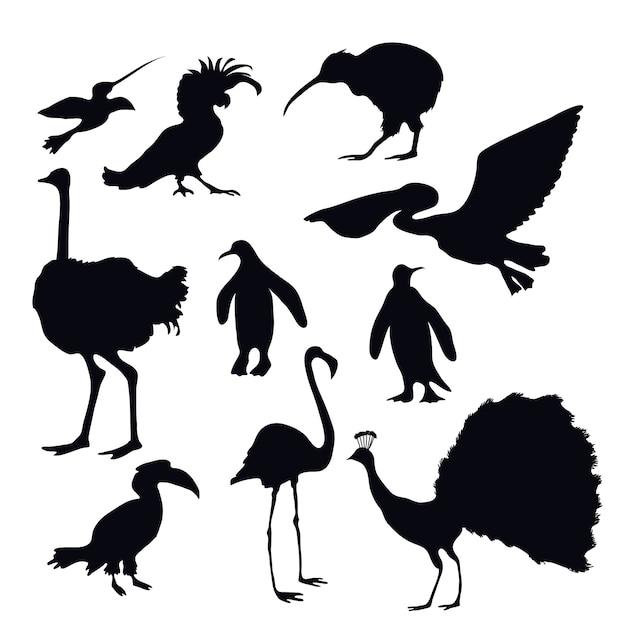 Exotische vögel silhouetten Premium Vektoren