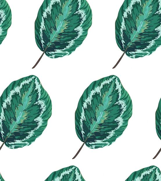Exotisches nahtloses muster mit blättern. botanische textur. Premium Vektoren