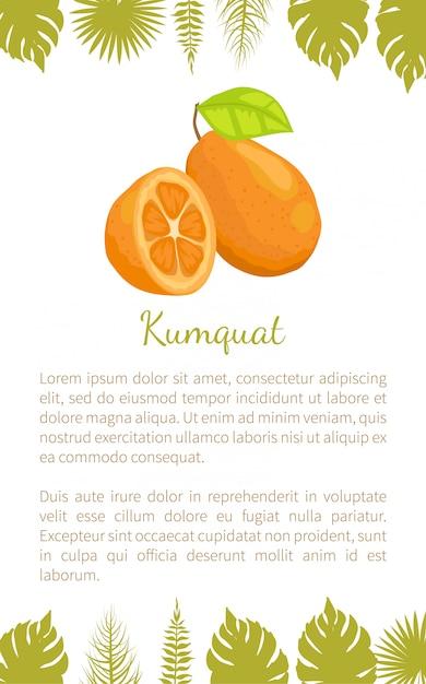 Exotisches saftiges frucht-vektor-plakat-text-blatt der japanischen orange Premium Vektoren