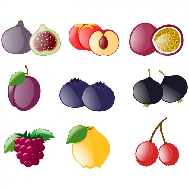 Farbige Früchte Sammlung | Download der kostenlosen Vektor