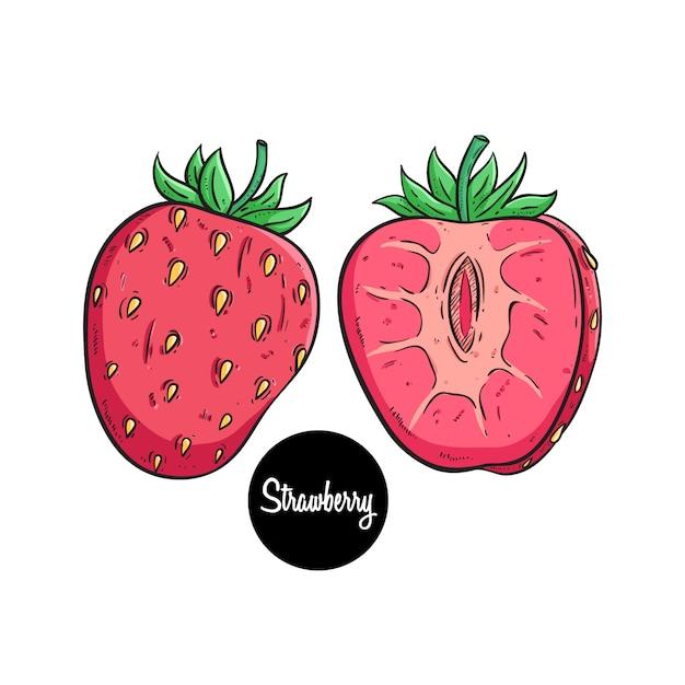 Farbige hand gezeichnete erdbeerfrucht mit text auf weißem hintergrund Premium Vektoren
