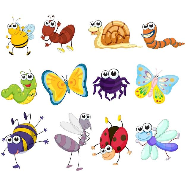 Farbige insekten sammlung Kostenlosen Vektoren