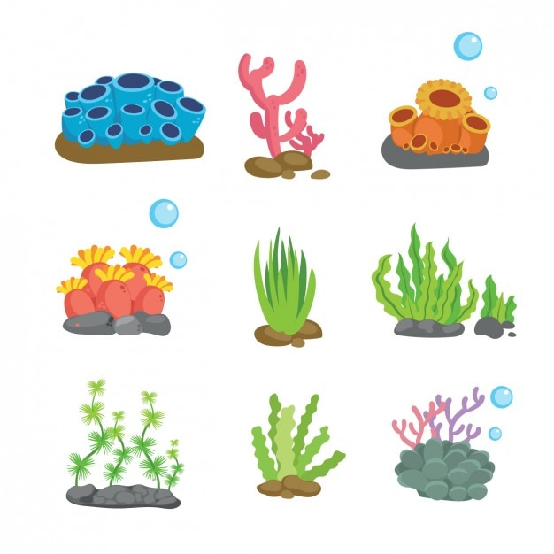 Farbige sealife-elemente-sammlung Kostenlosen Vektoren