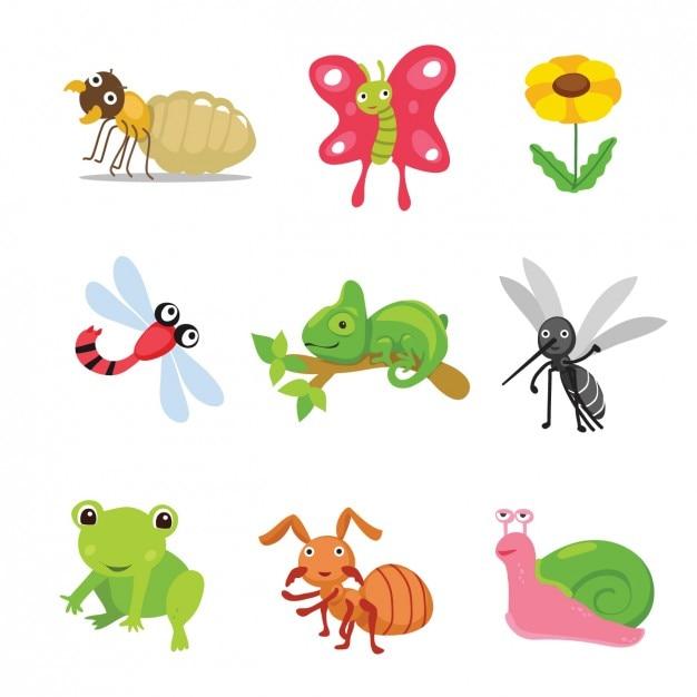 Farbige tiere und insekten-sammlung Kostenlosen Vektoren
