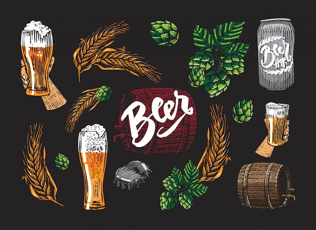 Farbiges bier elementset Kostenlosen Vektoren