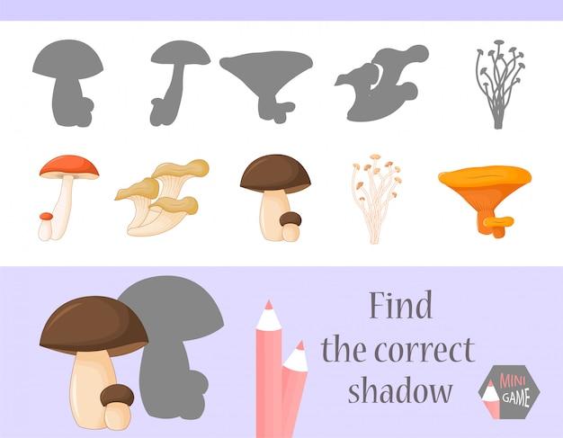 Finden sie den richtigen schatten, lernspiel für kinder. niedliche cartoon-tiere und natur. vektor-illustration. Premium Vektoren