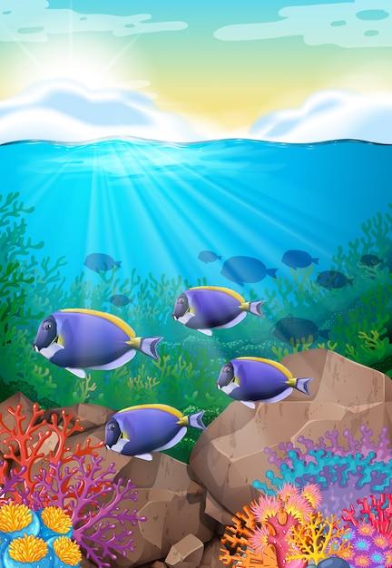 Fische schwimmen unter dem ozean Kostenlosen Vektoren
