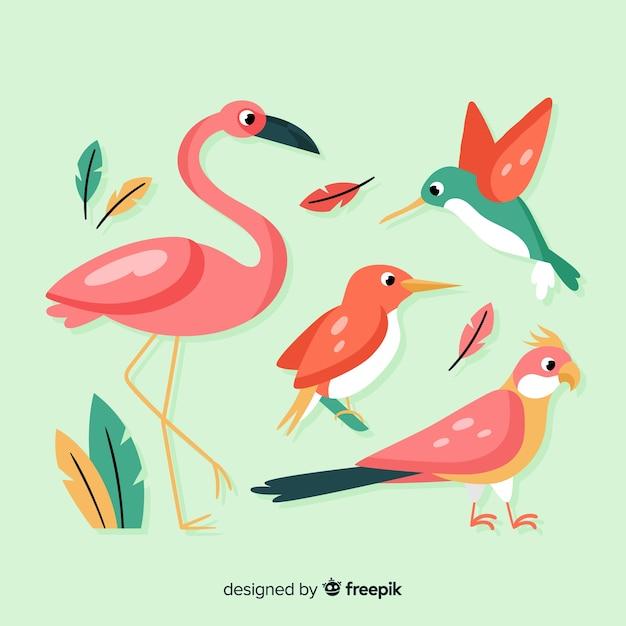 Flache art der exotischen vogelsammlung Kostenlosen Vektoren