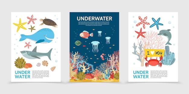 Flache bunte unterwasser-lebensbroschüren mit fischwalschildkrötenhai-quallen-seepferdchen-seestern-krabbe Kostenlosen Vektoren