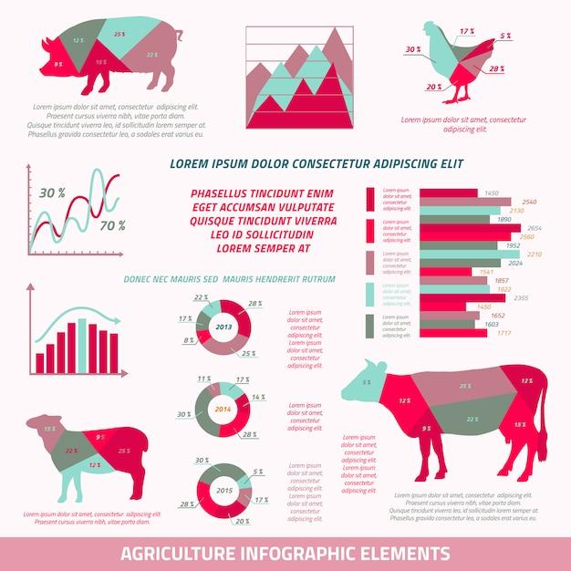Flache gestaltungselemente landwirtschaft infographics von viehhühnerkuhschweinschafen und von diagrammvektorillustration Kostenlosen Vektoren