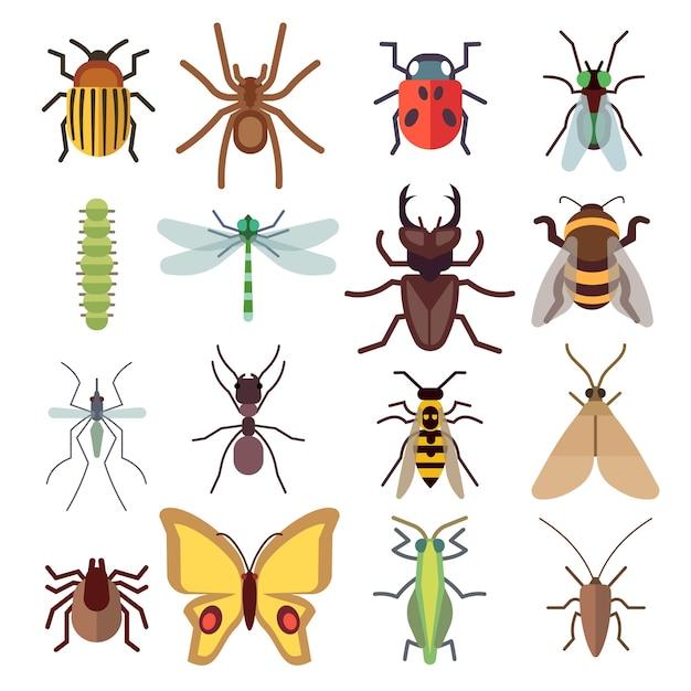 Flache ikonen des insekts lokalisiert auf weißem hintergrund. bug und mücke, fliege und spinne. vektor illustratio Premium Vektoren