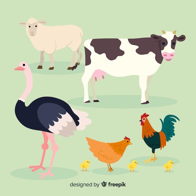 Flache nutztiersammlung Kostenlosen Vektoren