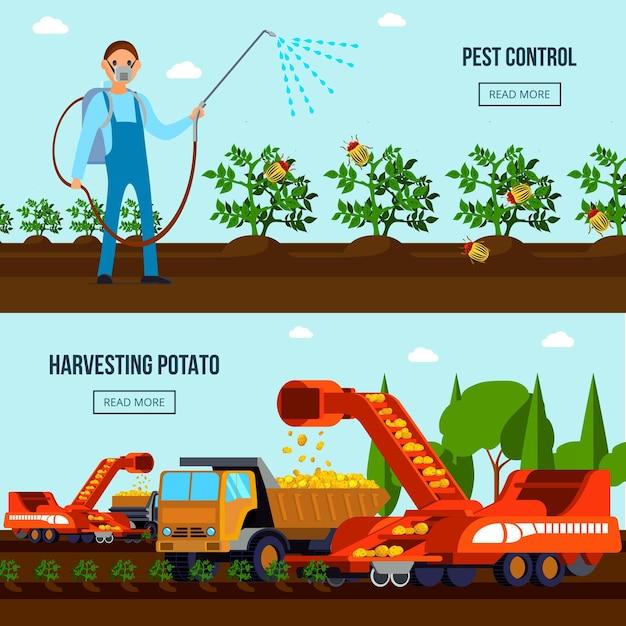 Flache zusammensetzungen des kartoffelanbaus mit schädlingsbekämpfung und landwirtschaftlichen fahrzeugen während der ernte lokalisiert Kostenlosen Vektoren