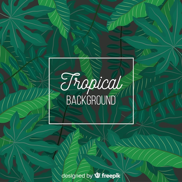 Flacher tropischer hintergrund Kostenlosen Vektoren