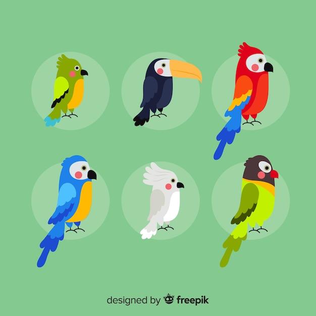 Flaches design der exotischen vogelsammlung Kostenlosen Vektoren