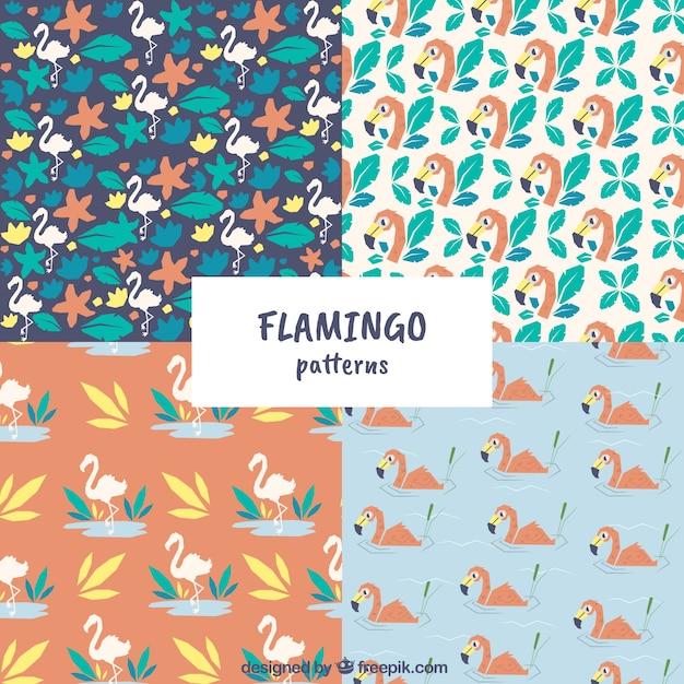 Flamenco-sommer-muster Kostenlosen Vektoren
