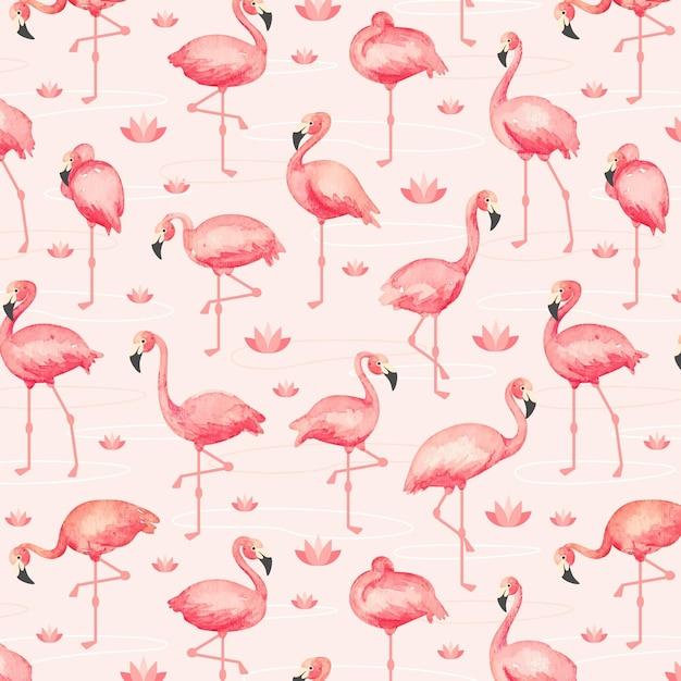Flamingo-musterpaket Premium Vektoren