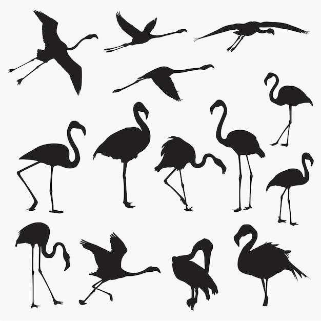 Flamingo-silhouetten Premium Vektoren