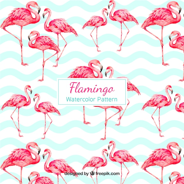 Flamingos muster in aquarell-stil Kostenlosen Vektoren