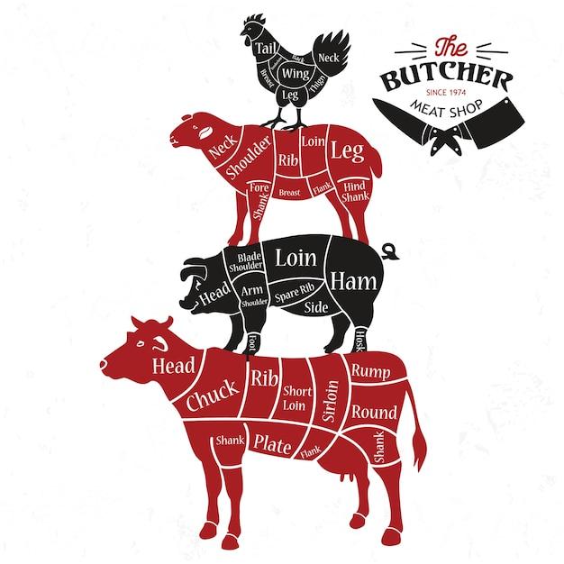 Fleischstücke. Premium Vektoren