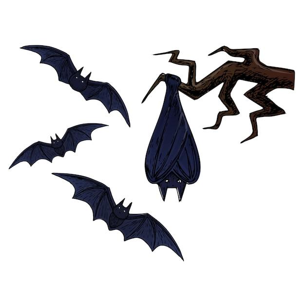 fliegende fledermaus, beängstigende halloween