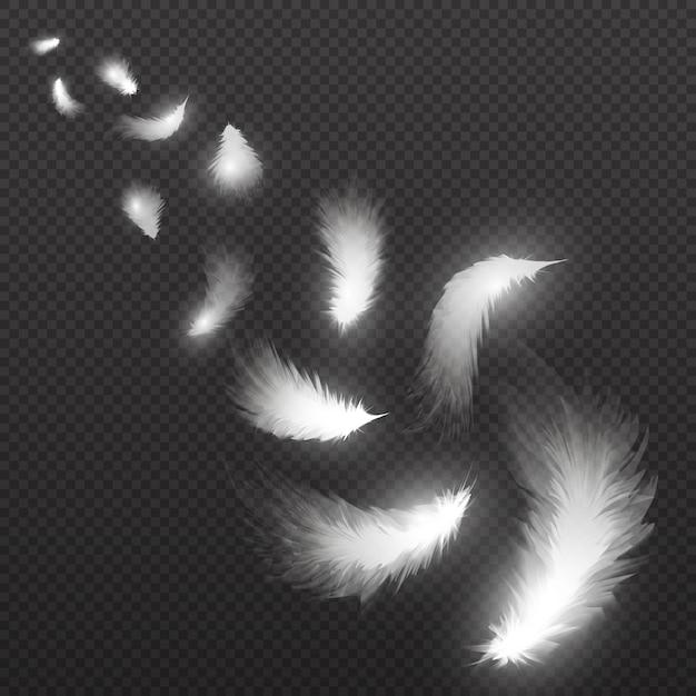 Fliegende schwanfedern plume auf transparentem. illustration. weiße feder fällt, flauschige feder fliegen Premium Vektoren