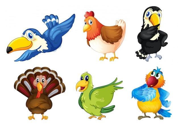 Fliegende vögel Kostenlosen Vektoren